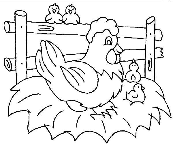 Little Chicken Wait For Their Mother Hatching Egg Coloring Pages