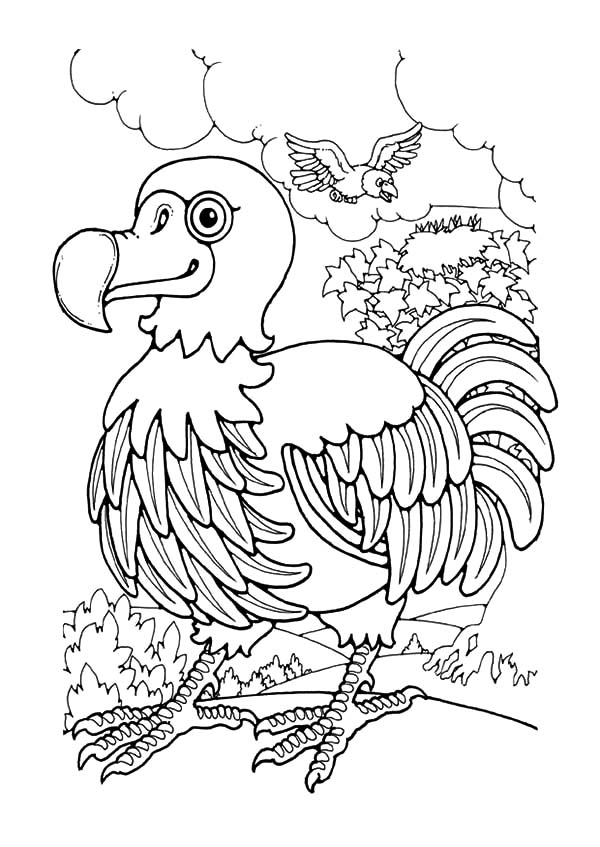 Mauritius Endemic Dodo Bird Coloring Pages