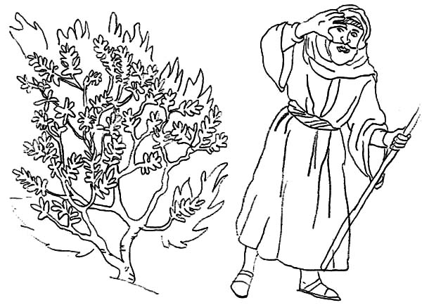 Moses Bedazzled to Burning Bush Coloring Pages NetArt
