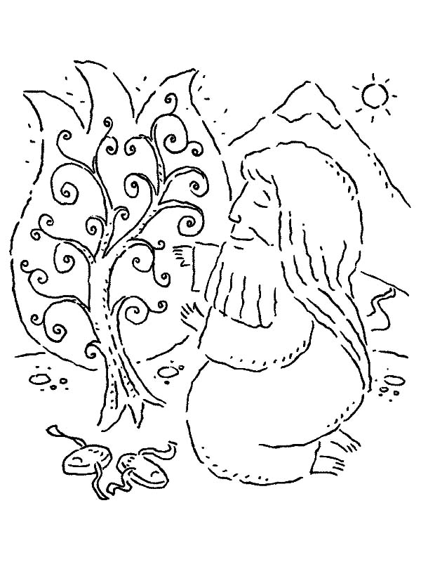 Moses Kneeling to Burning Bush Coloring Pages