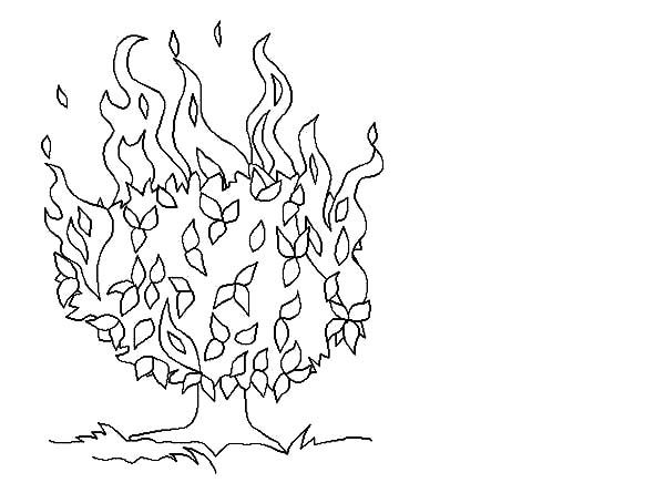 The Call Of Moses Colouring Pages Burning Bush