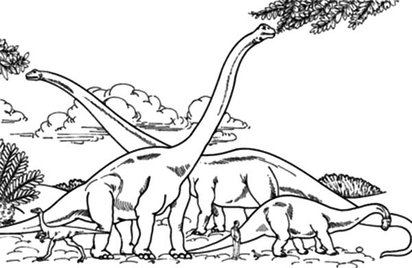 School of Diplodocus Coloring Pages