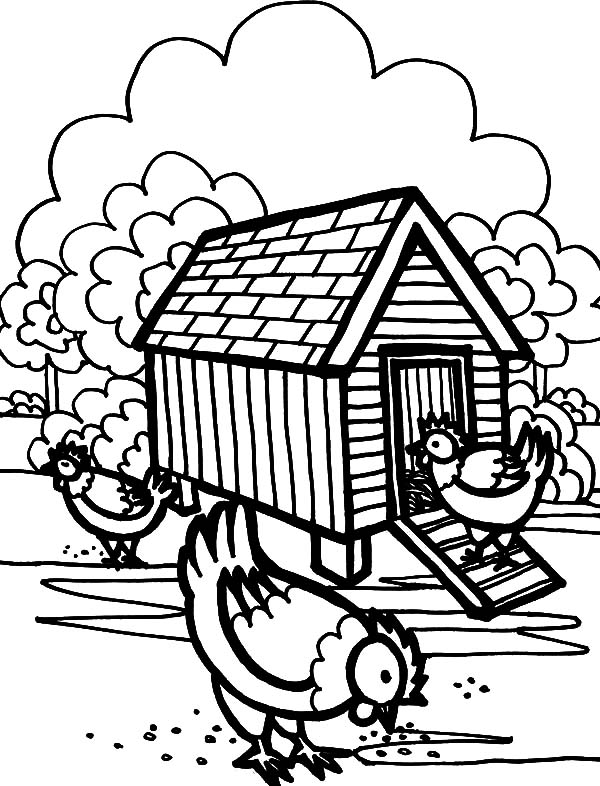 Three Hen In Front Of Chicken Coop Coloring Pages