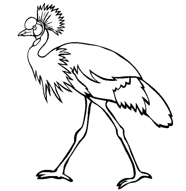 Walking Crane Bird Coloring Pages