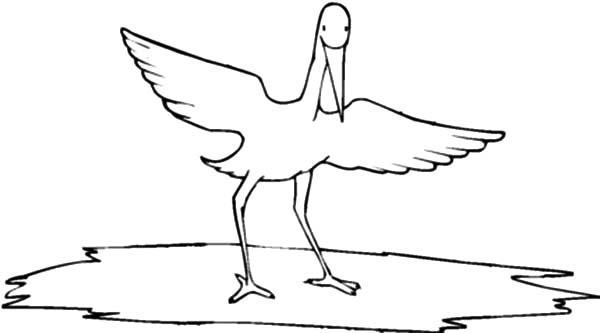 Wild Life Crane Bird Coloring Pages