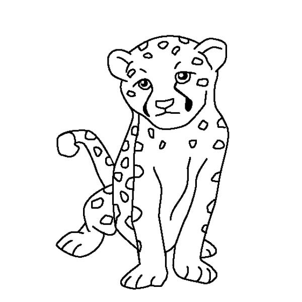 Cute Baby Cheetah Coloring Page - NetArt