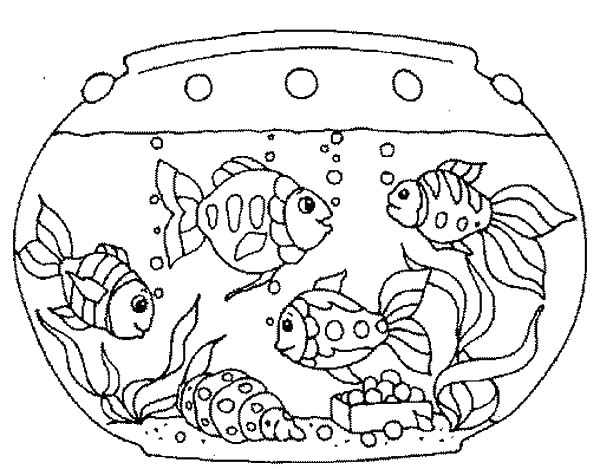 Coloring Pages Fish Tank Coloring Pages