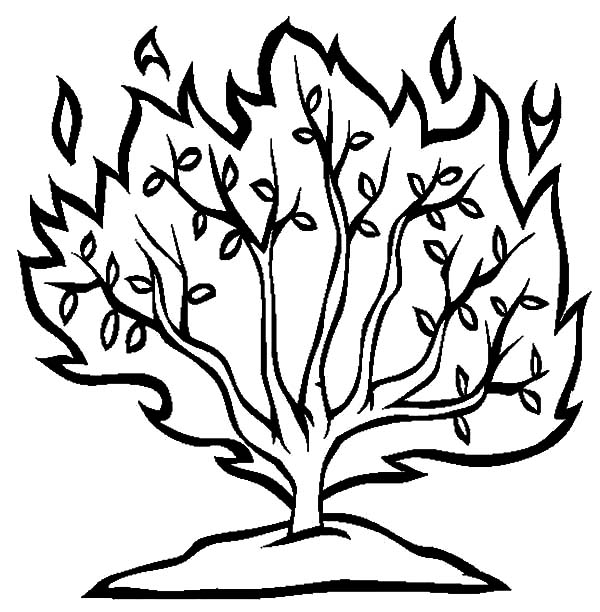 Moses and Burning Bush Coloring Pages - NetArt